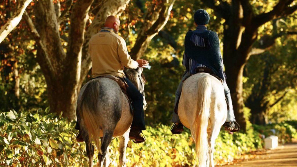 Centre-based riding holidays